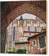 Cathedral Of Ste-cecile In Albi France Wood Print by Elena Elisseeva