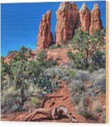 Cathedral Rock Wood Print by Lori Deiter