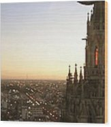 Cathedral Sunset - La Plata Wood Print