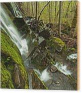 Cathles Jewels Wood Print