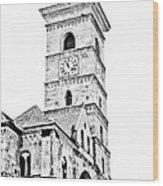 Catholic Cathedral In Alba Iulia Wood Print