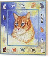 Cats Purrfection Five - Orange Tabby Wood Print