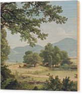 Catskill Meadows In Summer Wood Print by Asher Brown Durand
