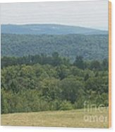 Catskill Rolling Hills Wood Print by Kevin Croitz