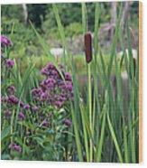 Cattail Pond II Wood Print