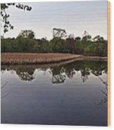 Cattail Swamp I Wood Print