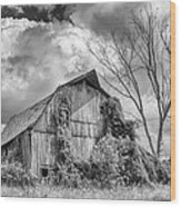 Cattaraugus County Barn 6160b Wood Print