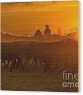 Cattle Drive 20 Wood Print