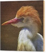 Cattle Egret 2 Wood Print