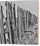 Cattle Fence By Diana Sainz Wood Print