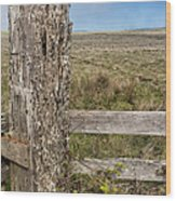 Cattle Fence On The Stornetta Ranch Wood Print