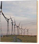 Cattle Graze In Field Next To Windmills Wood Print