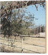 Cattle Ramp Wood Print