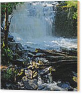 Cattyman Falls 2 Wood Print