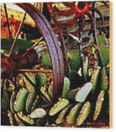 Caught In A Cactus Patch-sold Wood Print