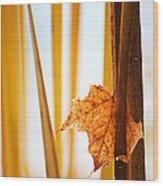 Caught Wood Print