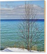Cave Point County Park Door County  Wood Print
