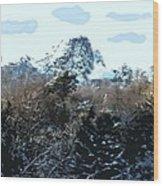 Cavehill In The Snow 2 Wood Print