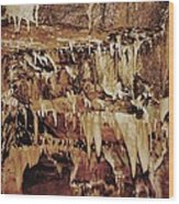 Cavern Beauty Wood Print