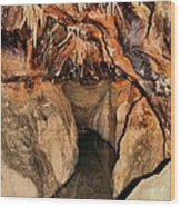 Cavern Path Wood Print