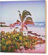 Cayman Island Secret Wood Print