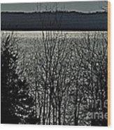 Cayuga Lake Wood Print