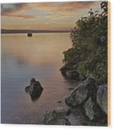 Cayuga Sunset I Wood Print by Michele Steffey