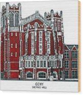 Ccny Shepard Hall Wood Print