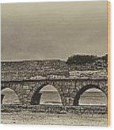 Ceasarea Aqueduct 1 Antiqued Wood Print
