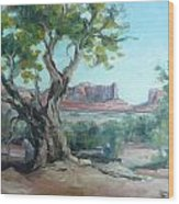 Cedar At Monument Valley Wood Print