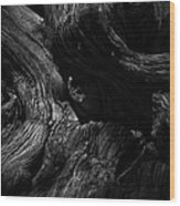 Cedar Burl Number Two Wood Print