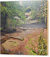 Cedar Falls Wood Print