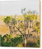 Cedar In The Marsh Wood Print