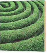 Cedar Maze Wood Print