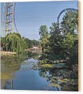 Cedar Point Ohio Wood Print