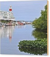 Cedar Point Ohio Wood Print
