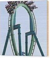 Cedar Point Roller Coaster Wood Print