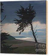 Cedar Silhouettes Wood Print