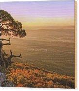 Cedar Tree Atop Mt. Magazine - Arkansas - Autumn Wood Print