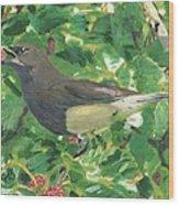 Cedar Waxwing Eating Mulberry Wood Print