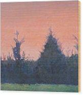 Cedars Along St. Marys In Hillsborough Wood Print