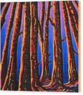 Cedars In Stanley Park Wood Print