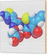 Cefixime Molecule Wood Print