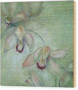 Celadon Cymbidiums Wood Print by Susan Hanlon