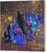 Celestial Butterfly Wood Print
