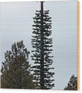Cell Tower Camouflage Wood Print