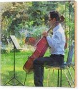Cellist In The Garden Wood Print