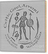 Celtic Vercingetorix Coin Wood Print