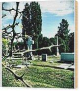 Cematary With Lemon Tree Wood Print