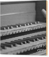 Cembalo Keyboards Wood Print